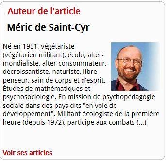 La fin des illusions de Méric de Saint-Cyr