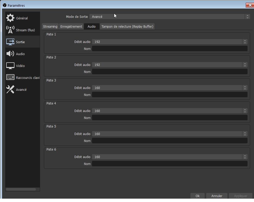 OBS Studio - Paramètres - Sortie - Avancé - Audio