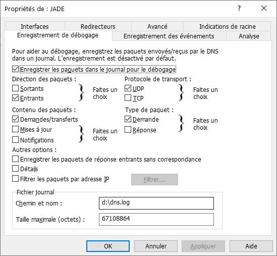 Propriétés du serveur DNS de Windows Server 2016/2019 > Enregistrement de débogage