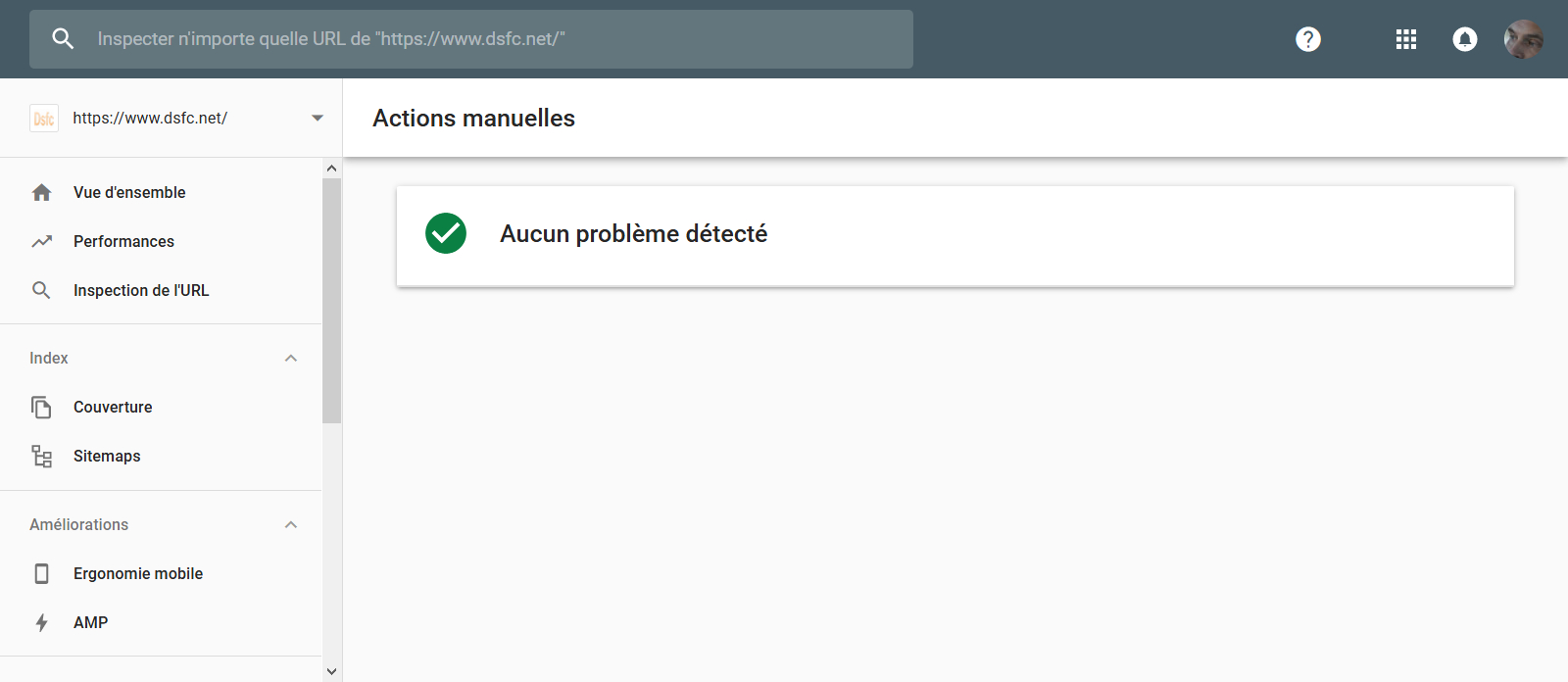Google Search Console > Actions manuelles